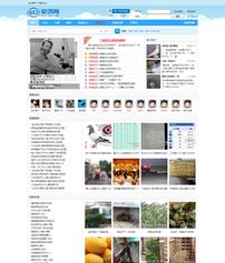 爱鸽网品牌网站策划与设计
